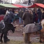 Dalarö Julmarknad 2016